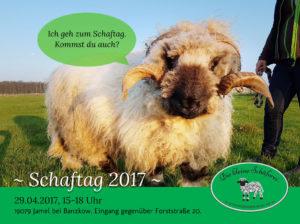 schaftag2017-5
